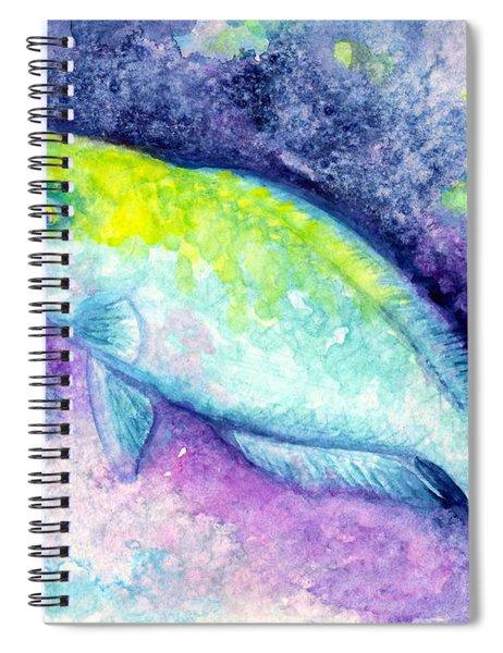 Blue Parrotfish Spiral Notebook
