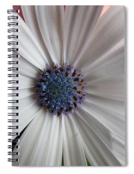 Blue-white Loveliness Spiral Notebook
