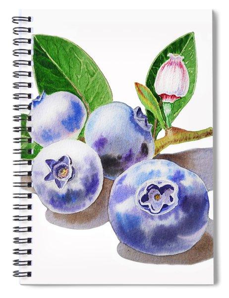 Artz Vitamins The Blueberries Spiral Notebook
