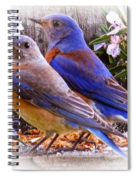 Bluebird Wedding Spiral Notebook