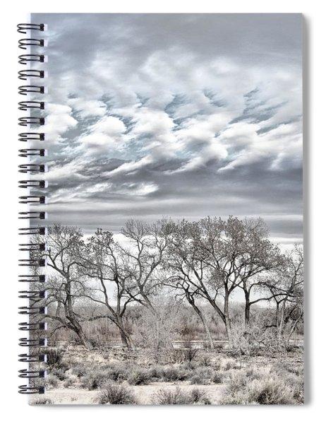Bosque Pale Spiral Notebook