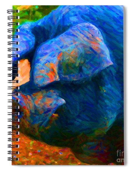 Boss Hog - 2013-0108 - Square Spiral Notebook