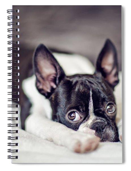 Fina Spiral Notebook