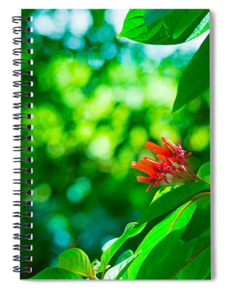 Botanical Garden Butterfly Spiral Notebook