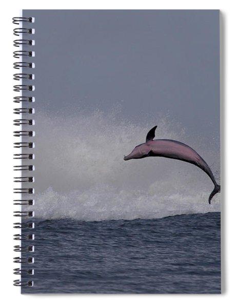Bottlenose Dolphin Photo Spiral Notebook