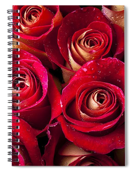 Boutique Roses Spiral Notebook