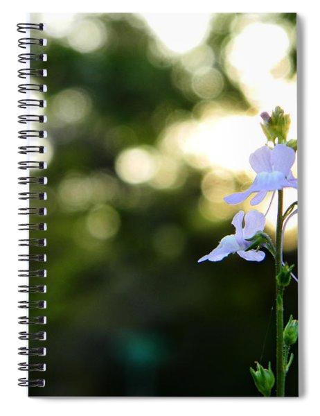 Breath Spiral Notebook