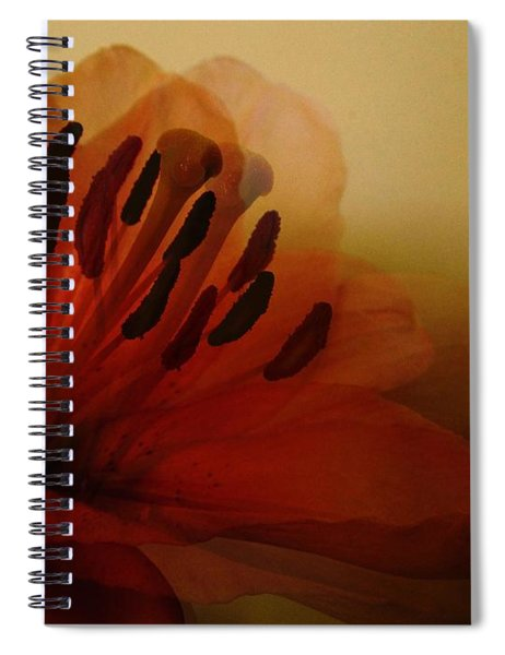 Breath Of The Lily Spiral Notebook