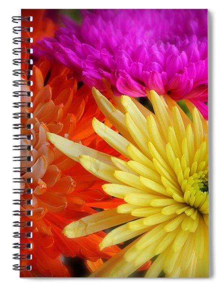 Bright Chrysanthemums Spiral Notebook