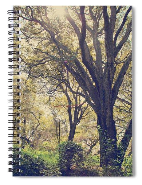 Brightening Up The Day Spiral Notebook