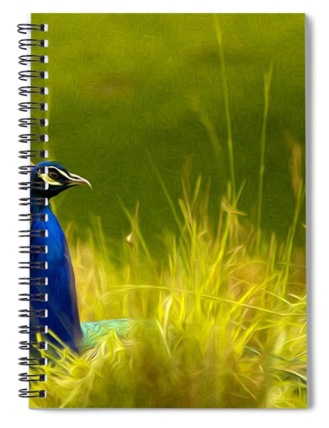 Bronx Zoo Peacock Spiral Notebook
