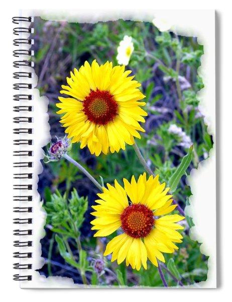 Brown- Eyed Susans Spiral Notebook
