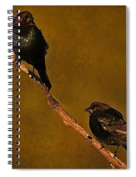 Brown-headed Cowbird Spiral Notebook