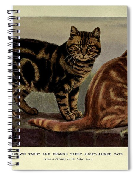 Brown Tabby And Orange Tabby Cats Spiral Notebook
