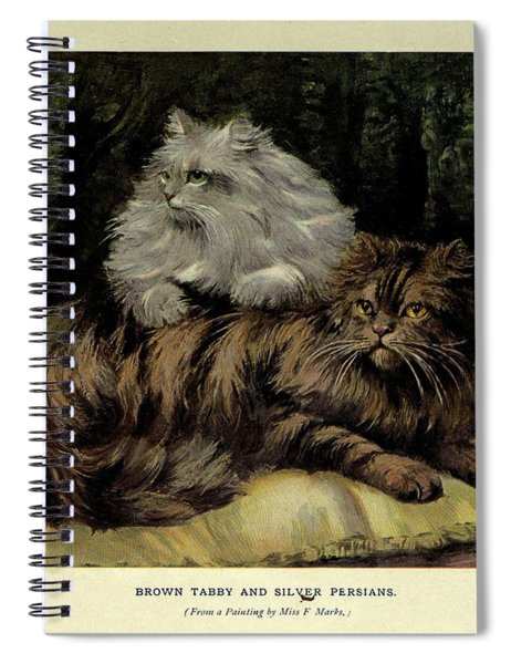 Brown Tabby And Silver Persian Spiral Notebook