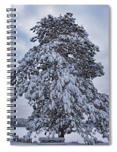 Buck Lake Flocked Pine Spiral Notebook