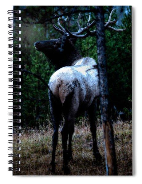 Bull Elk In Moonlight  Spiral Notebook