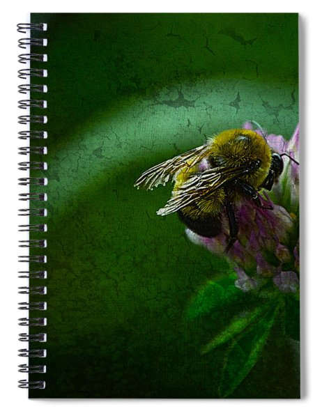 Bumble Bee Tattered Wings Art 2 Spiral Notebook