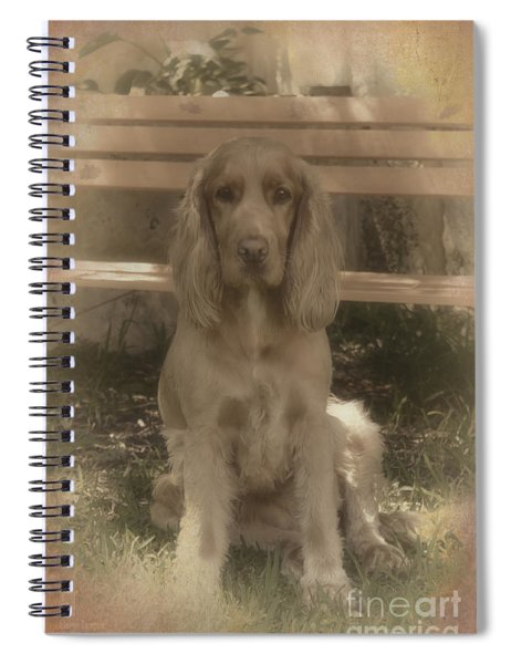 Bundy Spiral Notebook