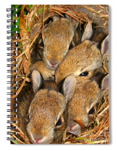 Spiral Notebook featuring the photograph Bunny Babies by Patti Whitten