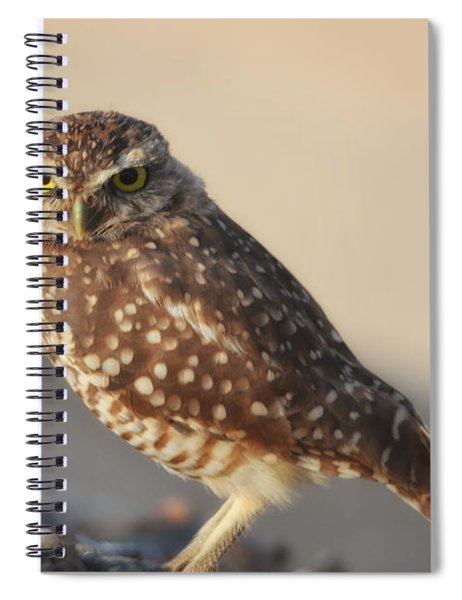 Burrowing Owl  Spiral Notebook