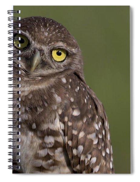 Burrowing Owl Spiral Notebook