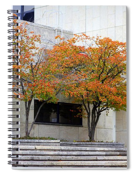Burst Of Color Spiral Notebook