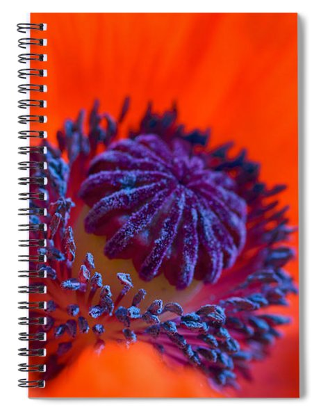 Spiral Notebook featuring the photograph Bursting With Colour by Garvin Hunter