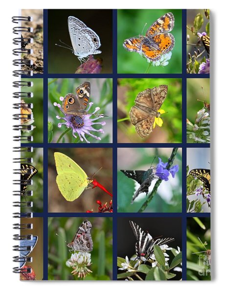 Butterflies Squares Collage Spiral Notebook