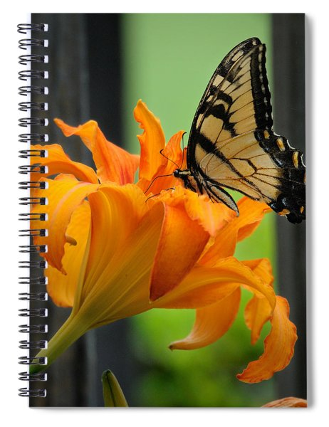 Butterfly Spiral Notebook