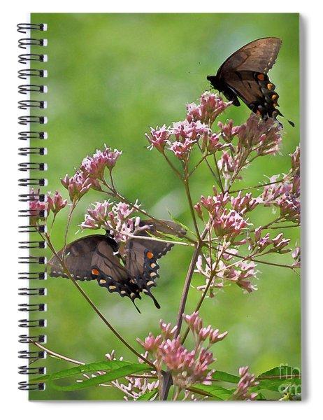 Butterfly Duet  Spiral Notebook