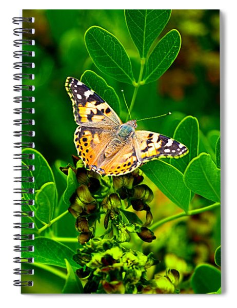 Butterfly In Paradise Spiral Notebook