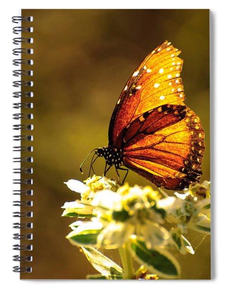 Butterfly In Sun Spiral Notebook