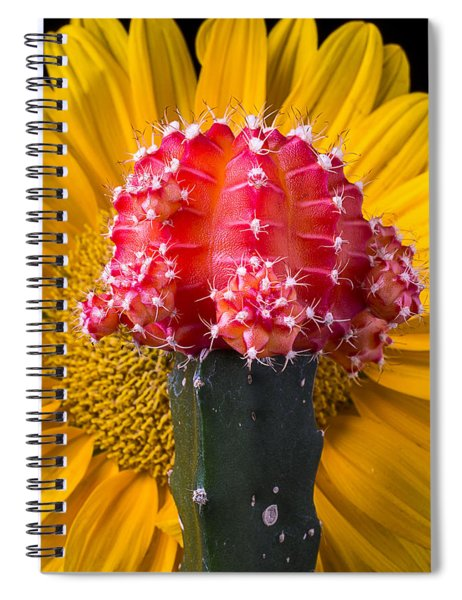 Cacti Bloom And Sunflower Spiral Notebook