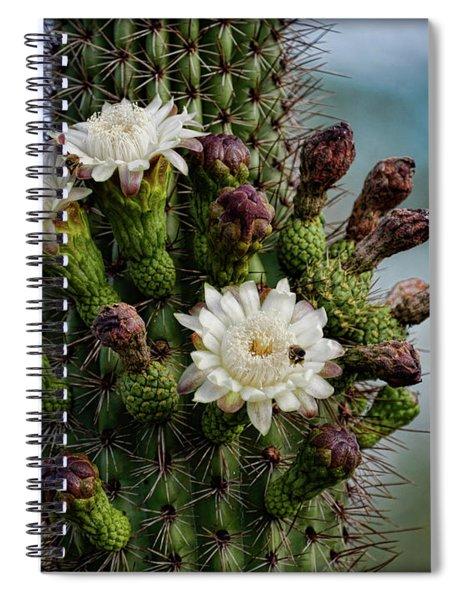 Cacti Bouquet  Spiral Notebook