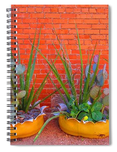 Cacti Quartet Spiral Notebook