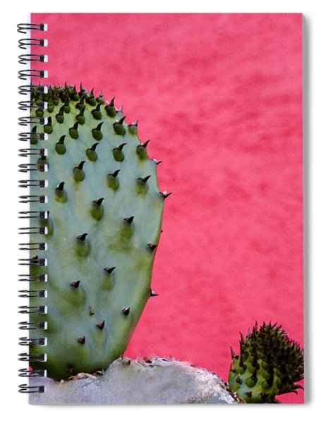 Cactus And Pink Wall Spiral Notebook by Carol Leigh