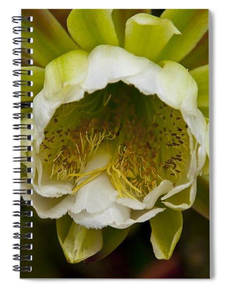 Cactus Flower 1 Spiral Notebook
