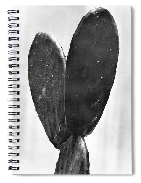 Cactus, Mexico City, 1925 Spiral Notebook