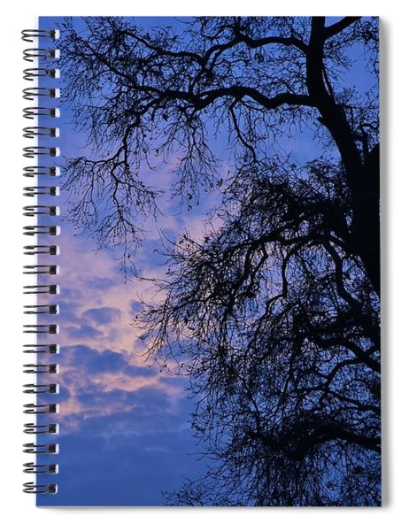California Oak Sunrise Spiral Notebook