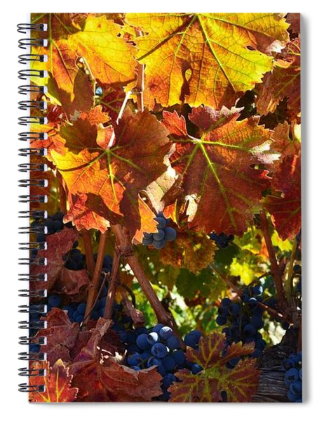 California Wine Grapes Spiral Notebook