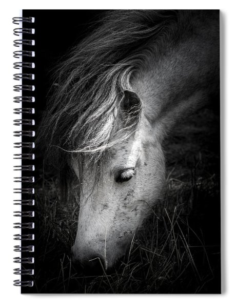 Call Me The Wind Spiral Notebook by Shane Holsclaw