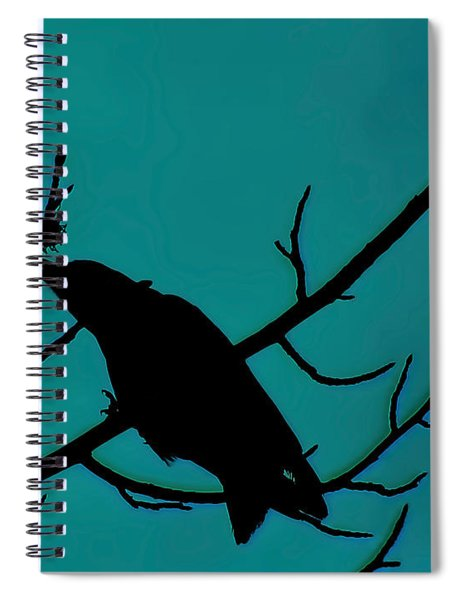 Call Of The Crow On Aqua 2 Spiral Notebook