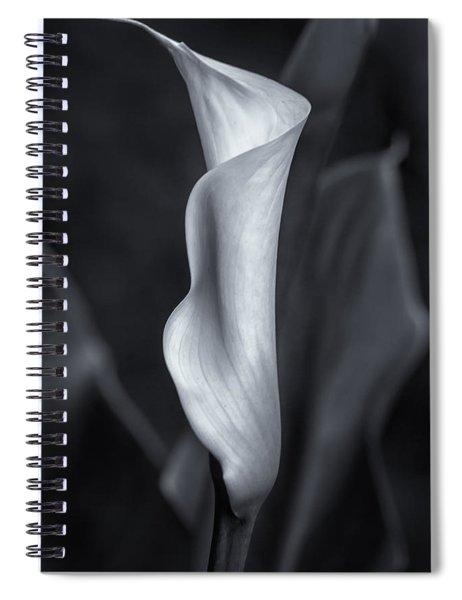 Calla Lily No. 2 - Bw Spiral Notebook