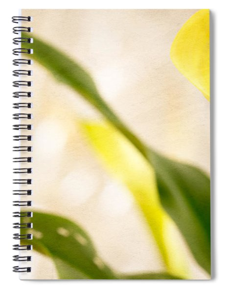 Calla Lily Two Spiral Notebook