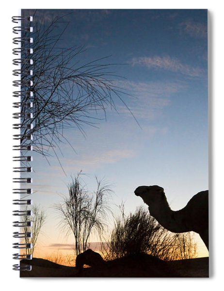 Camel Sunset Spiral Notebook