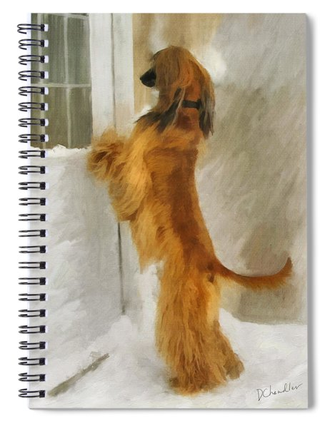 Can I Come In Now? Spiral Notebook