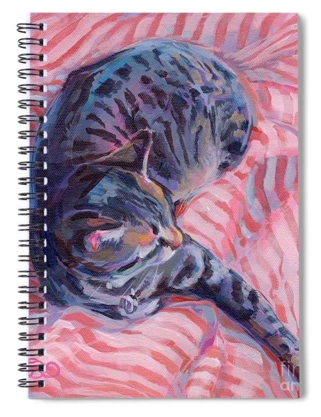 Candy Cane Spiral Notebook