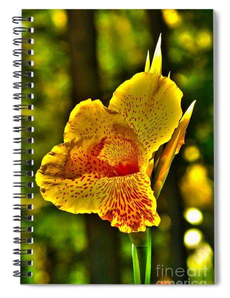 Canna Wow Spiral Notebook