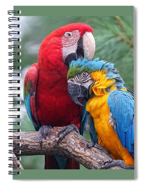 Grooming Session Spiral Notebook